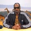 Snoop Dogg jest Krystyną Czubówną Planet Earth. Nie przegap tego!
