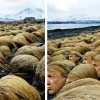 Breaking news! Wiemy, gdzie Donald Trump hoduje swoje włosy!