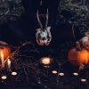 Filmy na Halloween – najlepsza dwunastka