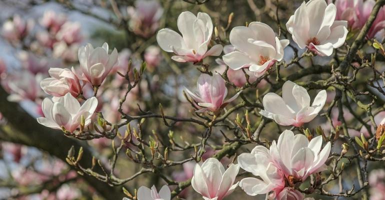 Kwiecień! Pokaż światu, że wiosna to nie tylko widok za oknem