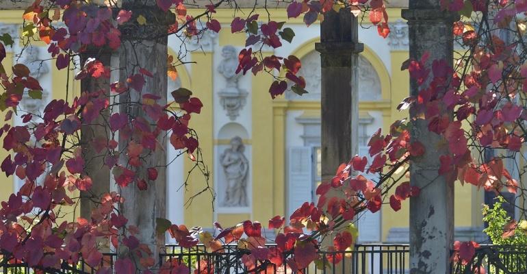 Darmowy Listopad w Muzeum Pałacu Króla Jana III w Wilanowie
