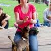 Animalove targi dla miłośników zwierząt