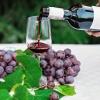 Wina wegańskie