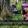 Badacze Przyrody – warsztaty dla dzieci